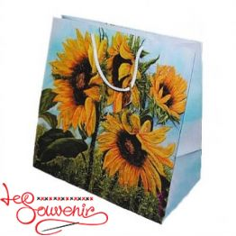 Package Sunflower 22,5*22,5*14 ISM-1062