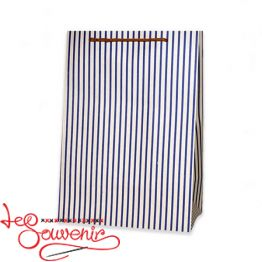 Bag Blue strip 37*23*15 ISM-1077
