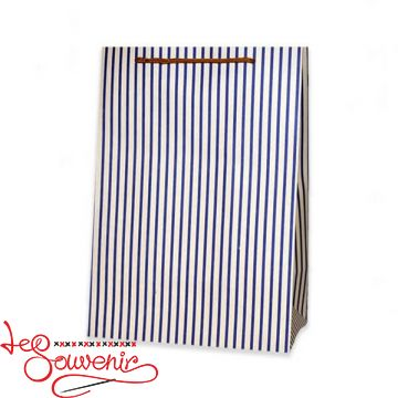 Bag Blue strip 37*23*15 ISM-1077