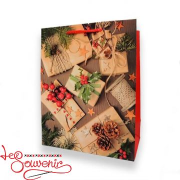 Package Surprises under the Christmas tree 32*26*12,5 ISM-1088