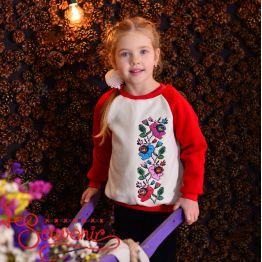 Sweater Borshhagivka PSD-1013