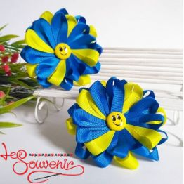 Blue and Yellow Rubber Band for Hair PGB-1019
