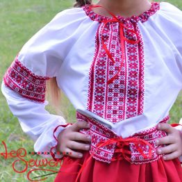 Suit with Red Embroidery DVK-1010