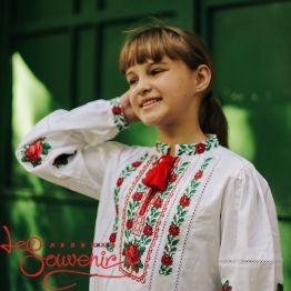 Вишиванка Чарівна трояндочка DVS-1012