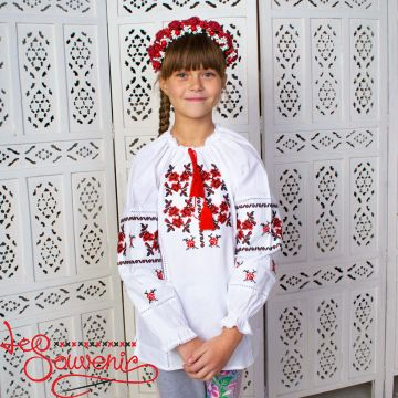 Вишиванка Трояндочка DVS-1025